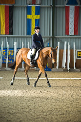 Dressage Event Photography
